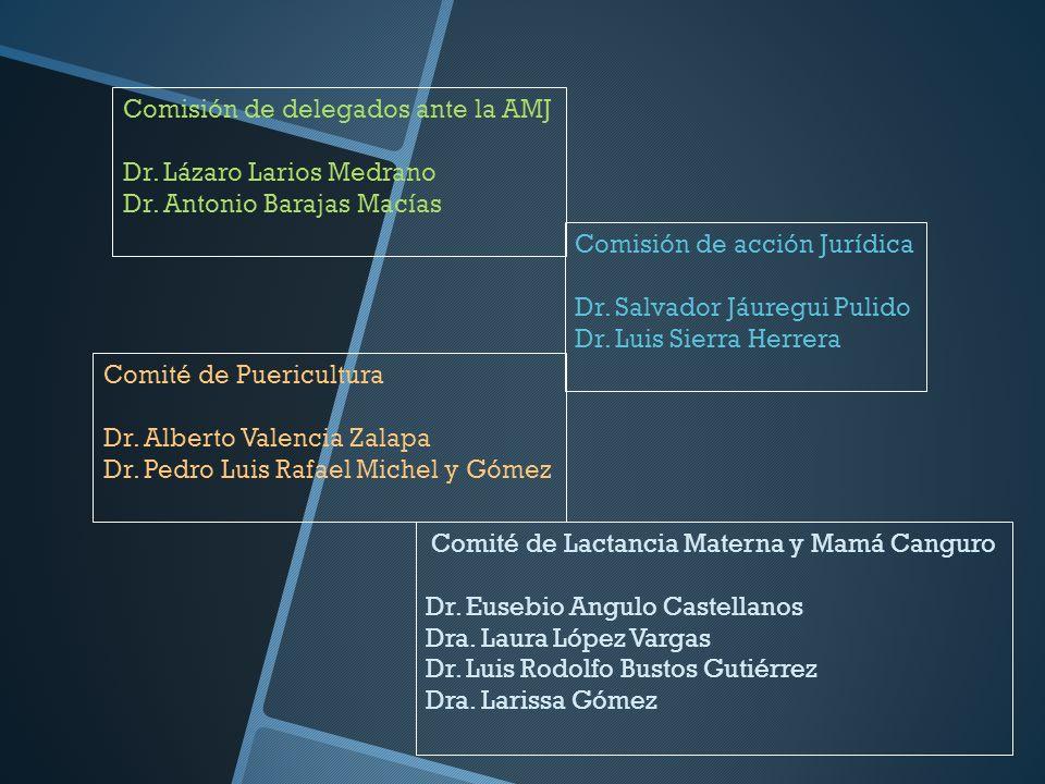 Comisión de delegados ante la AMJ Dr. Lázaro Larios Medrano