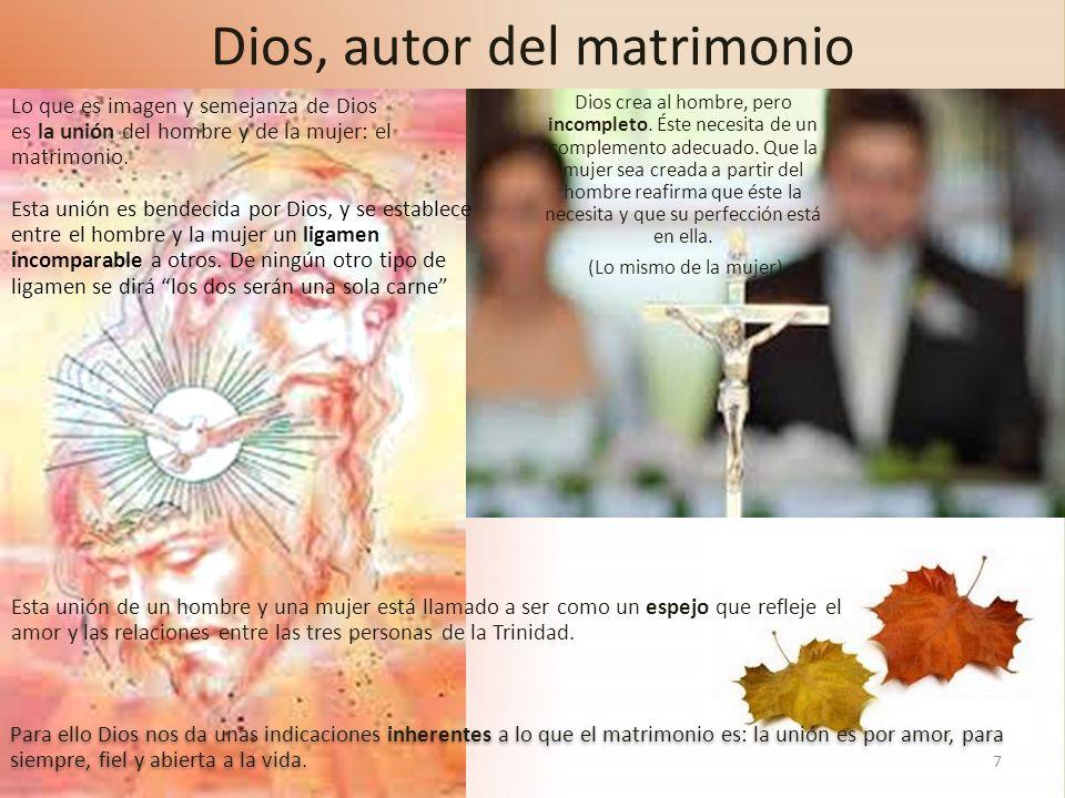 Dios, autor del matrimonio