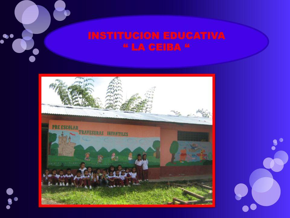 INSTITUCION EDUCATIVA