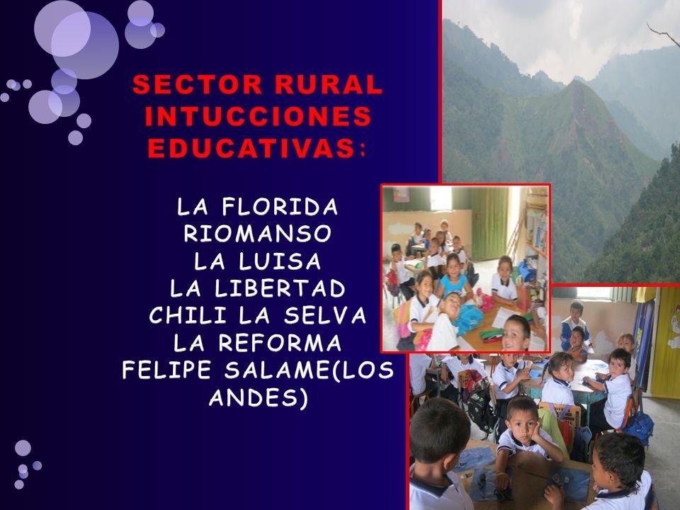 SECTOR RURAL INTUCCIONES EDUCATIVAS: LA FLORIDA RIOMANSO LA LUISA LA LIBERTAD CHILI LA SELVA LA REFORMA FELIPE SALAME(LOS ANDES)