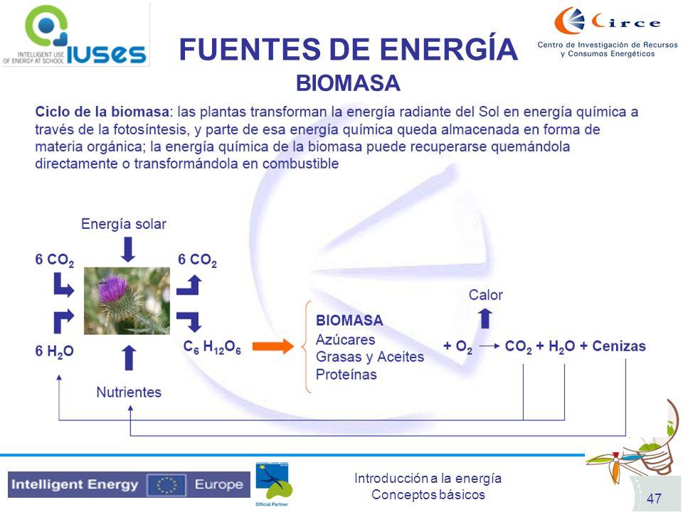 FUENTES DE ENERGÍA BIOMASA