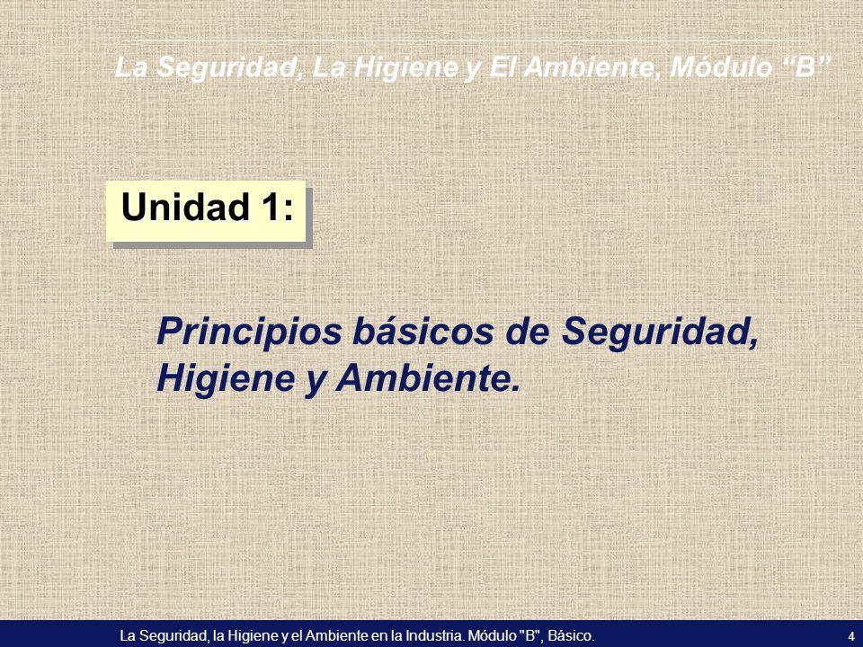 Principios básicos de Seguridad, Higiene y Ambiente.