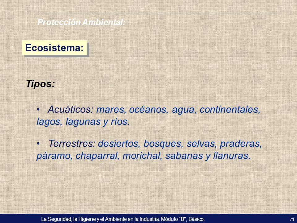 Acuáticos: mares, océanos, agua, continentales, lagos, lagunas y ríos.