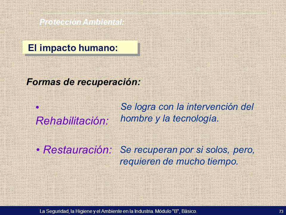 Rehabilitación: Restauración: El impacto humano: