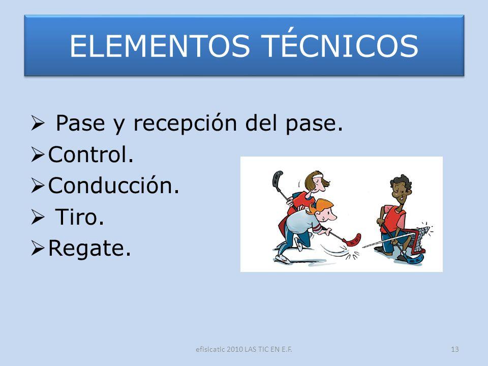 efisicatic 2010 LAS TIC EN E.F.