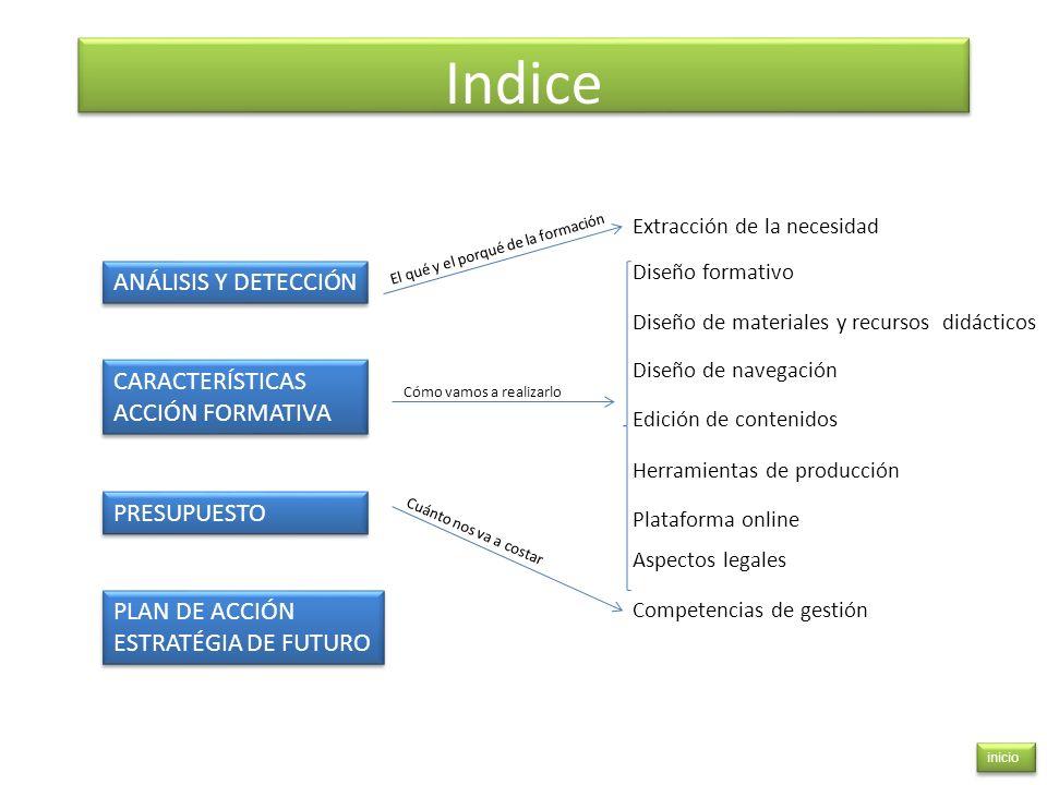 Indice ANÁLISIS Y DETECCIÓN CARACTERÍSTICAS ACCIÓN FORMATIVA