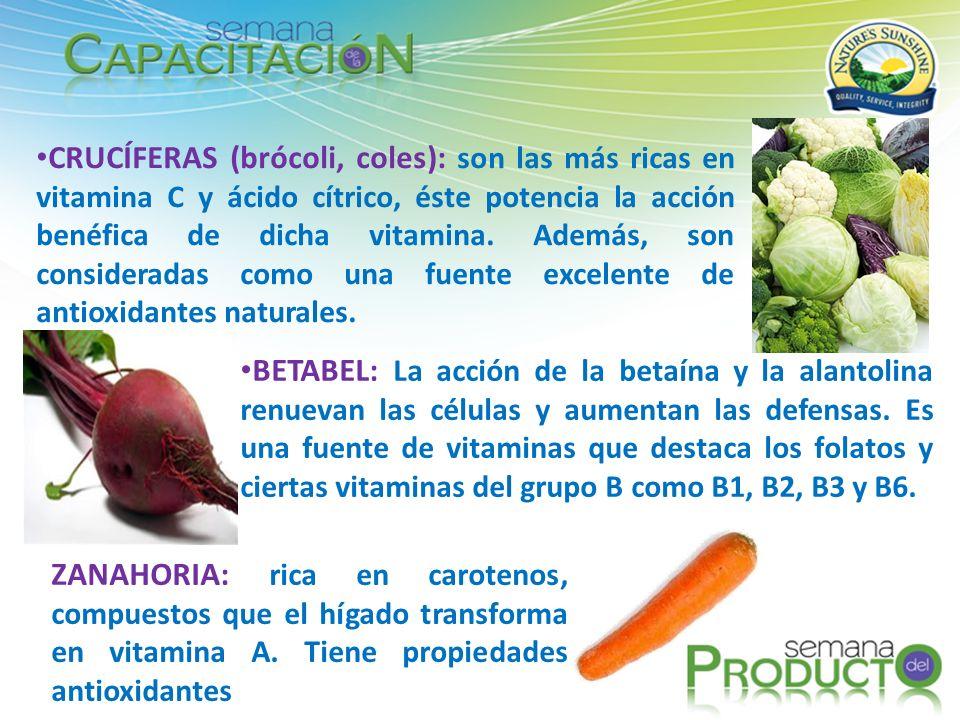 CRUCÍFERAS (brócoli, coles): son las más ricas en vitamina C y ácido cítrico, éste potencia la acción benéfica de dicha vitamina. Además, son consideradas como una fuente excelente de antioxidantes naturales.