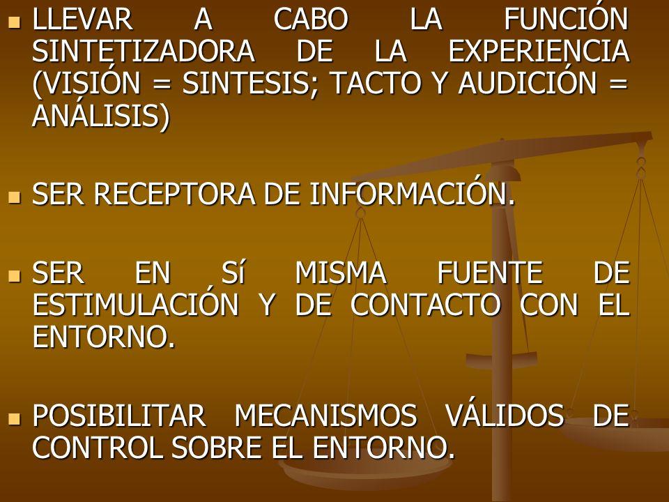 LLEVAR A CABO LA FUNCIÓN SINTETIZADORA DE LA EXPERIENCIA (VISIÓN = SINTESIS; TACTO Y AUDICIÓN = ANÁLISIS)