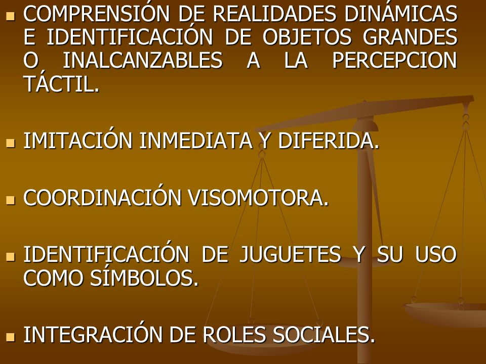 COMPRENSIÓN DE REALIDADES DINÁMICAS E IDENTIFICACIÓN DE OBJETOS GRANDES O INALCANZABLES A LA PERCEPCION TÁCTIL.
