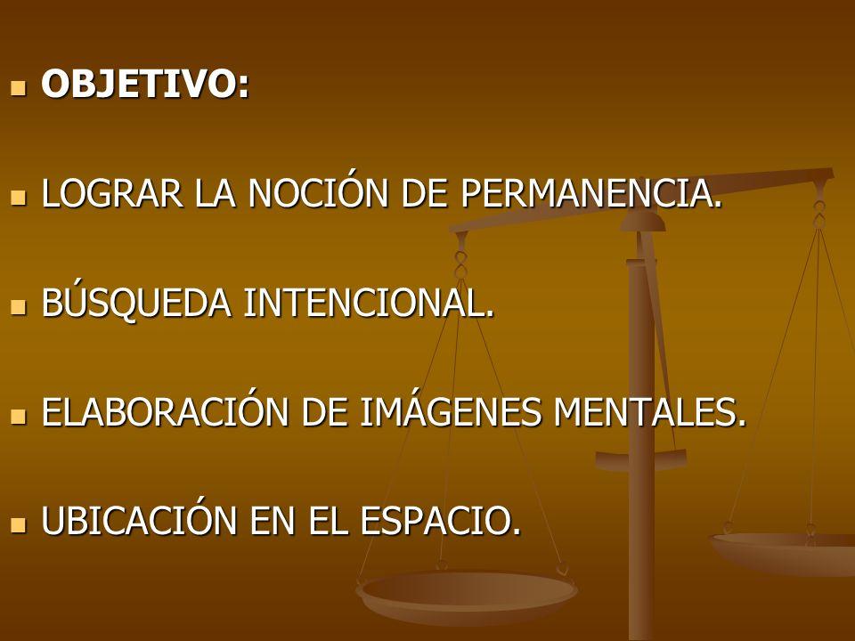 OBJETIVO: LOGRAR LA NOCIÓN DE PERMANENCIA. BÚSQUEDA INTENCIONAL. ELABORACIÓN DE IMÁGENES MENTALES.