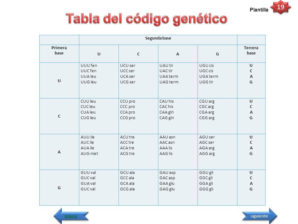 Tabla del código genético