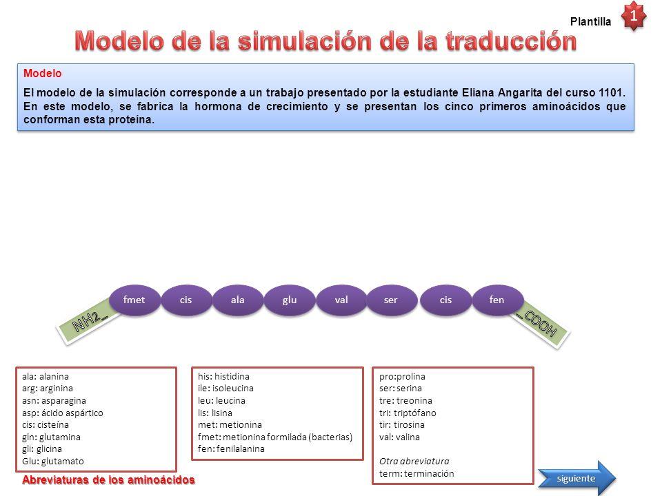 Modelo de la simulación de la traducción