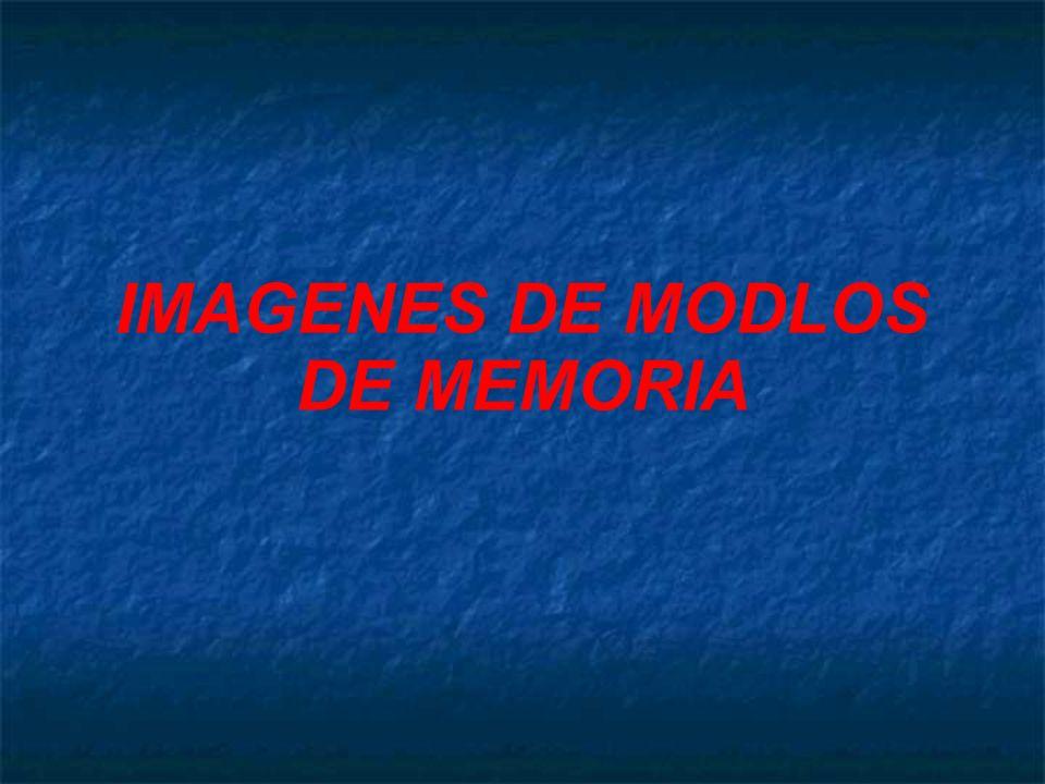IMAGENES DE MODLOS DE MEMORIA