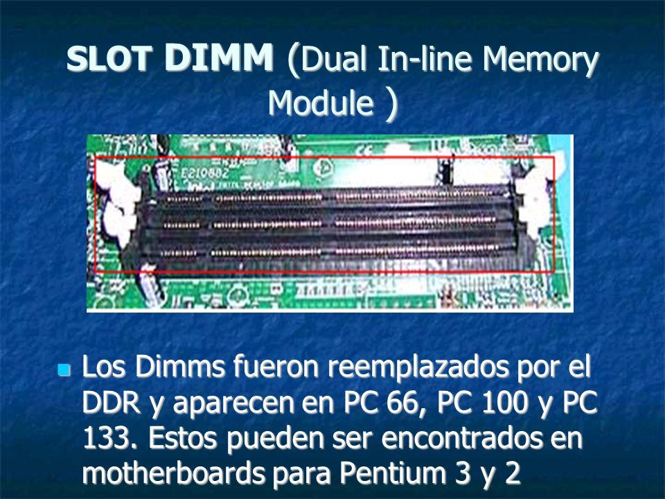 SLOT DIMM (Dual In-line Memory Module )