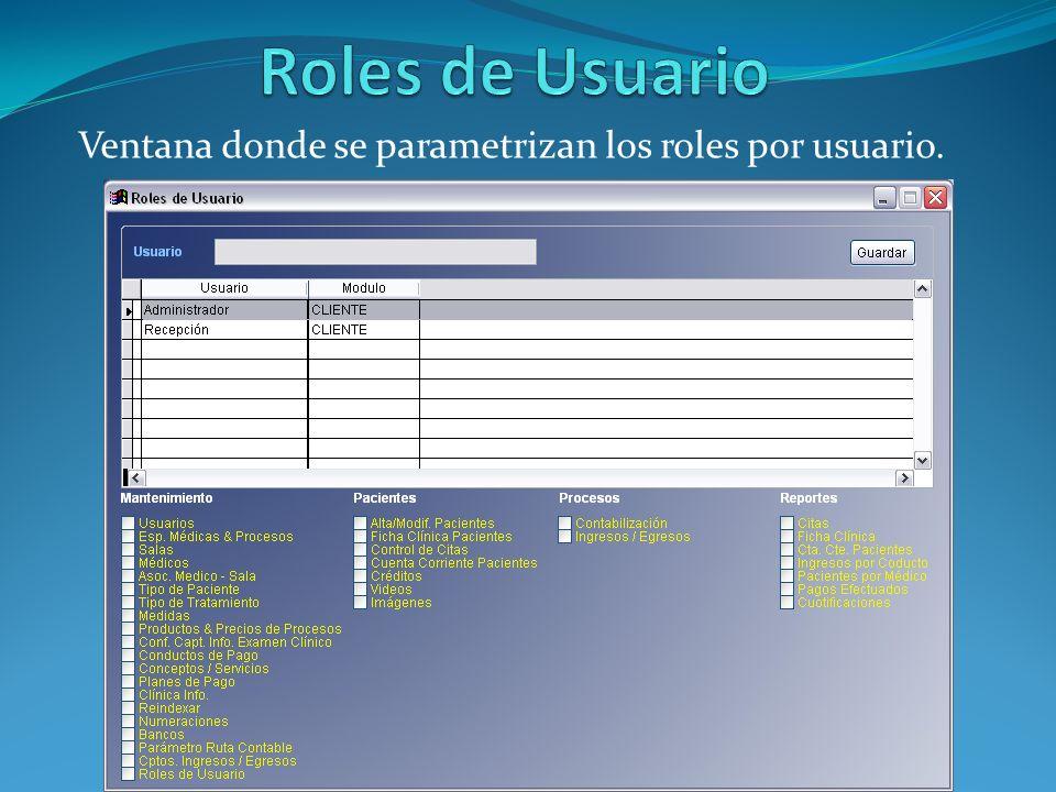 Ventana donde se parametrizan los roles por usuario.