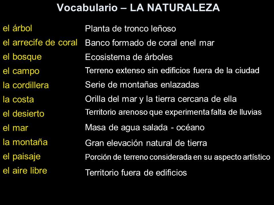Vocabulario – LA NATURALEZA