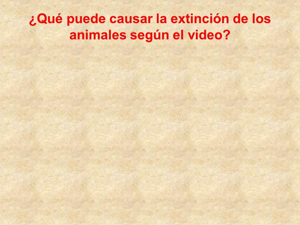 ¿Qué puede causar la extinción de los animales según el video