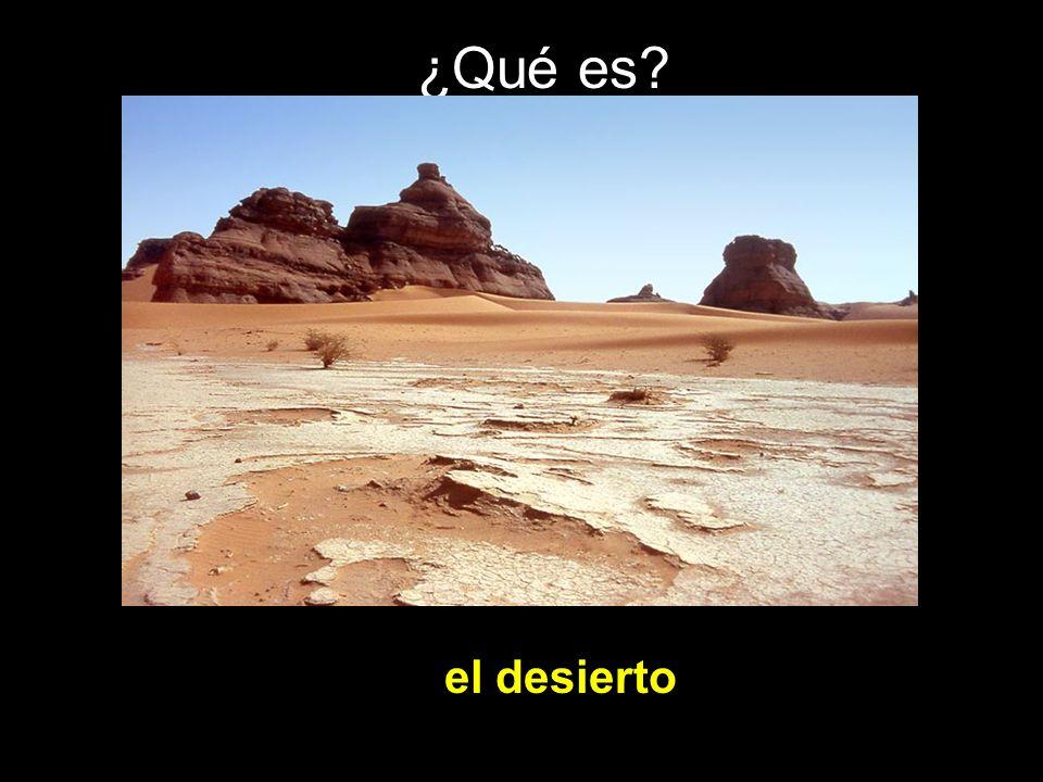 ¿Qué es el desierto