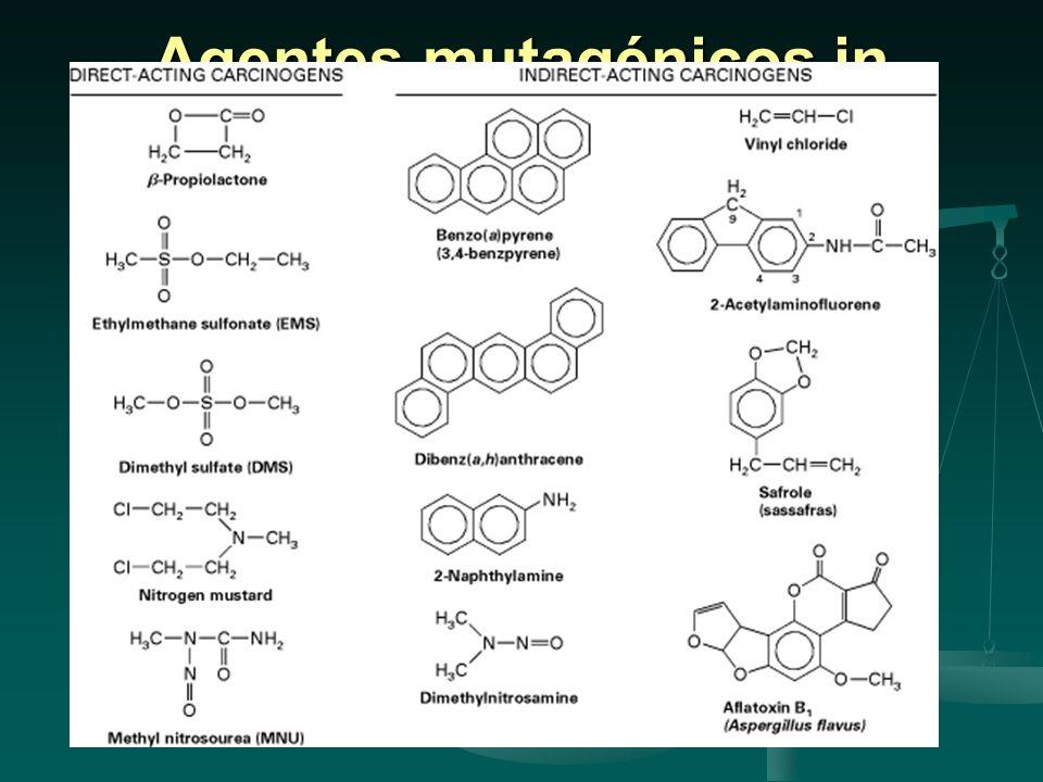 Agentes mutagénicos in cancerígenos