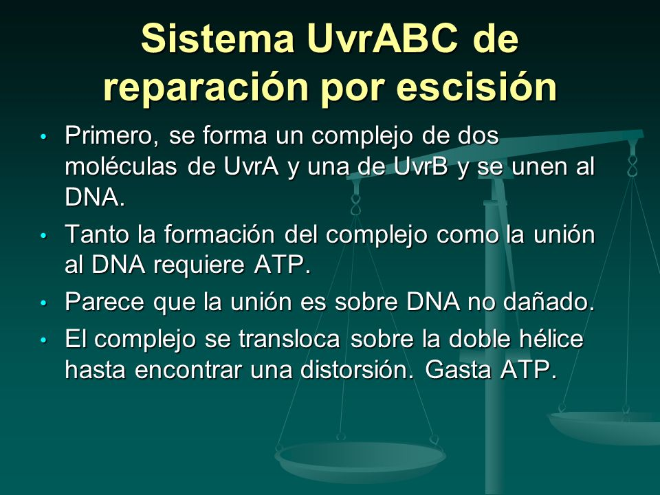 Sistema UvrABC de reparación por escisión