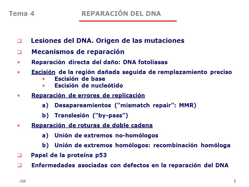 Tema 4 REPARACIÓN DEL DNA Lesiones del DNA. Origen de las mutaciones