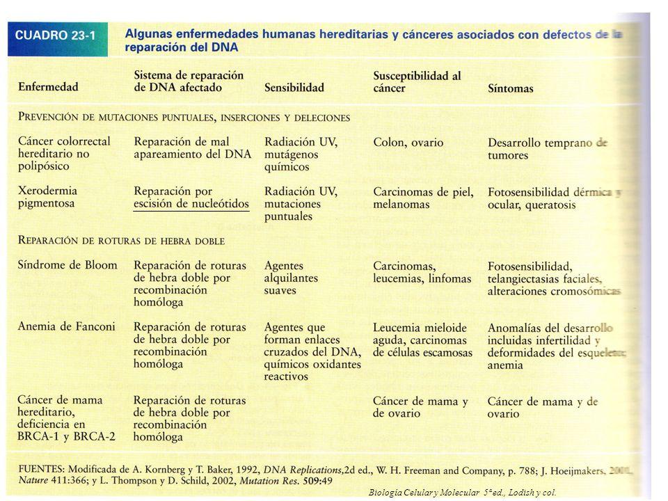 Biología Celular y Molecular 5ª ed., Lodish y col.