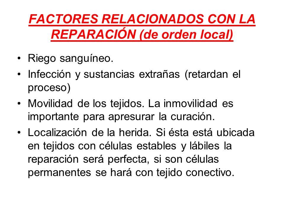 FACTORES RELACIONADOS CON LA REPARACIÓN (de orden local)