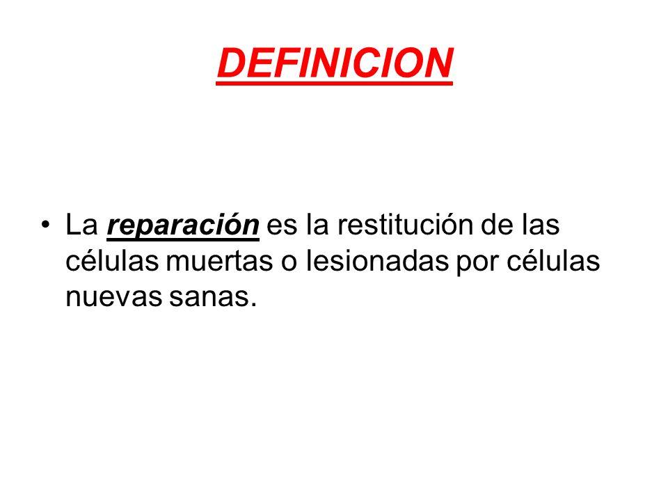 DEFINICION La reparación es la restitución de las células muertas o lesionadas por células nuevas sanas.