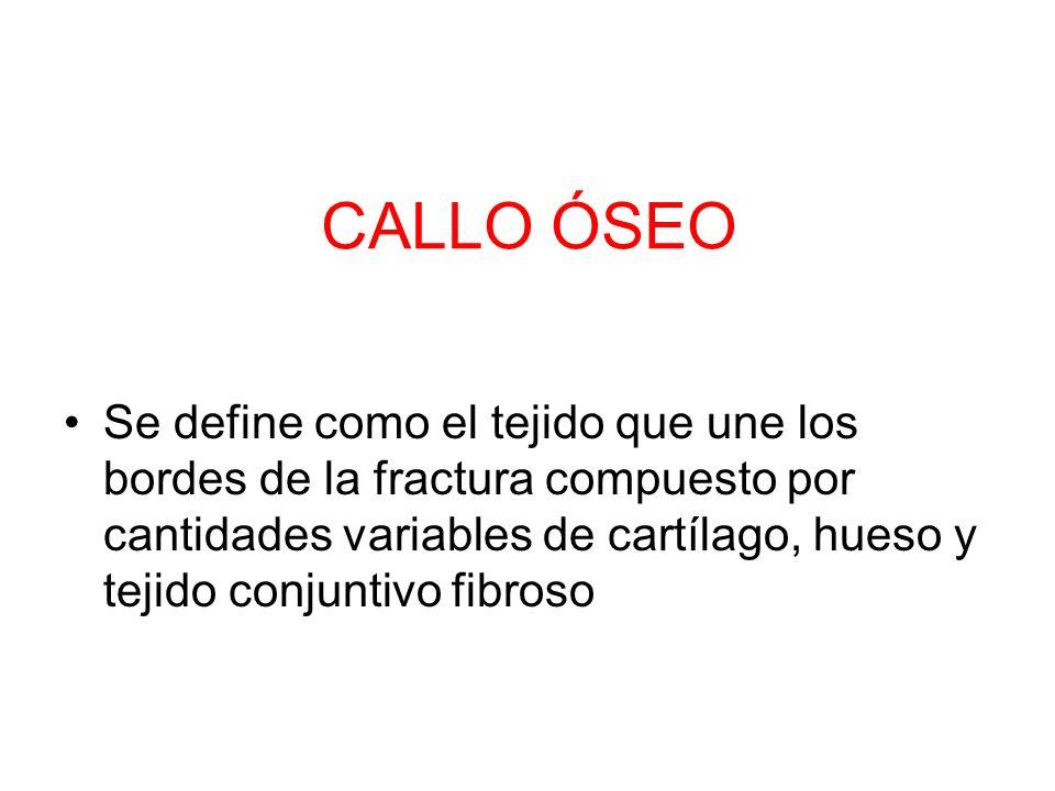 CALLO ÓSEO
