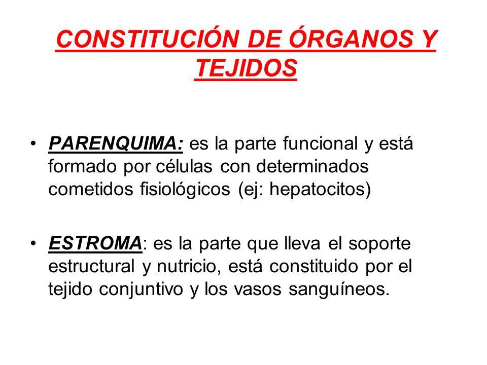 CONSTITUCIÓN DE ÓRGANOS Y TEJIDOS
