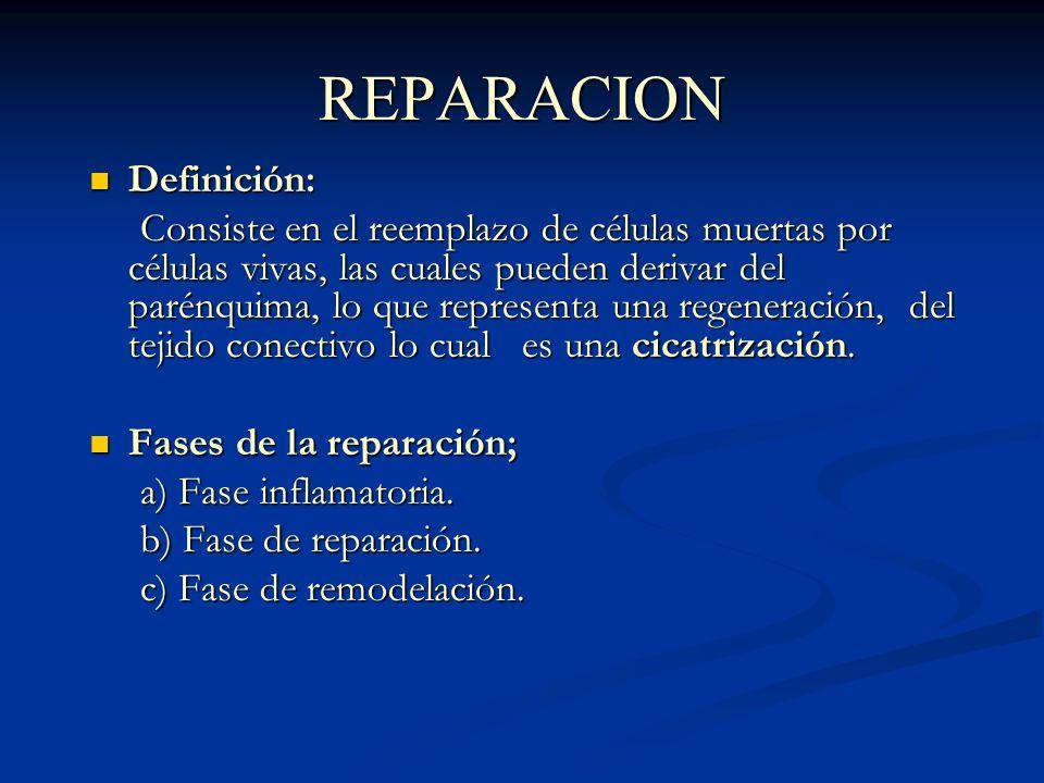REPARACION Definición: