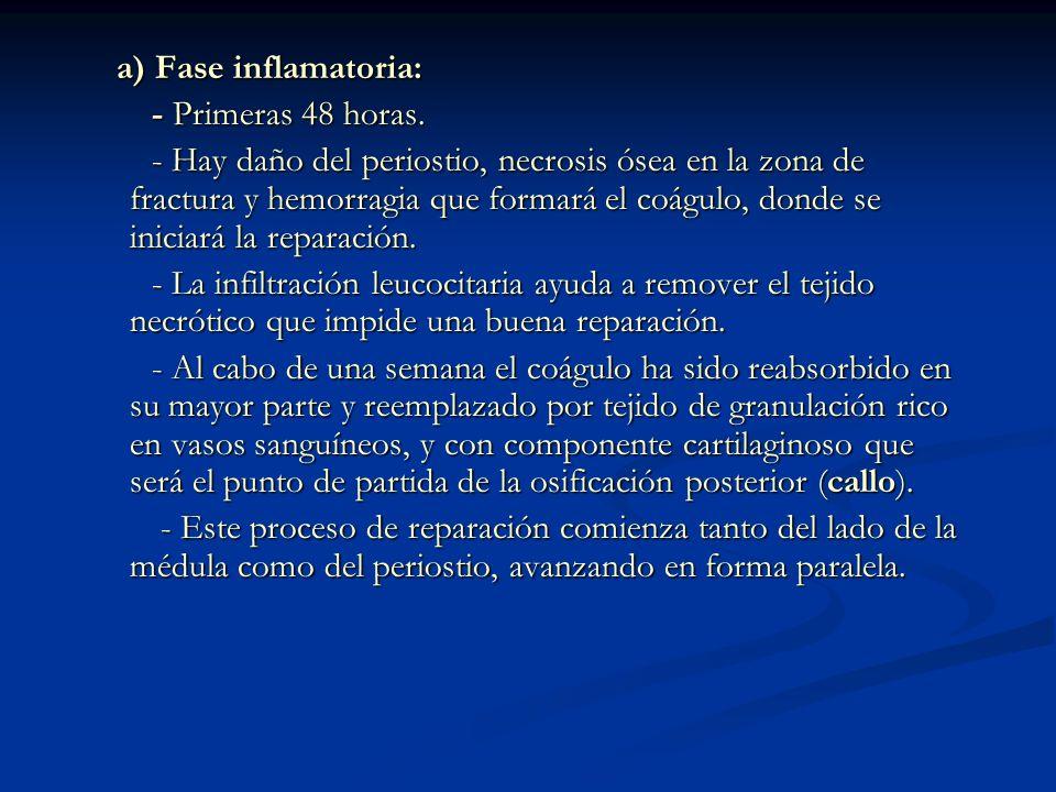 a) Fase inflamatoria: - Primeras 48 horas.