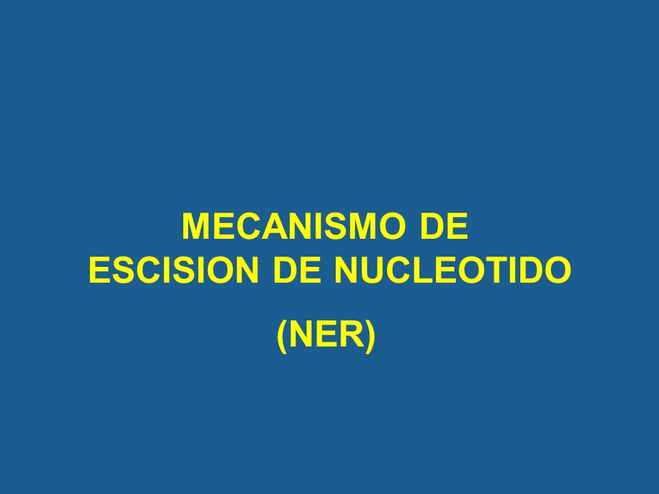 ESCISION DE NUCLEOTIDO