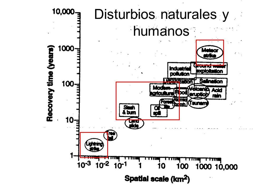 Disturbios naturales y humanos