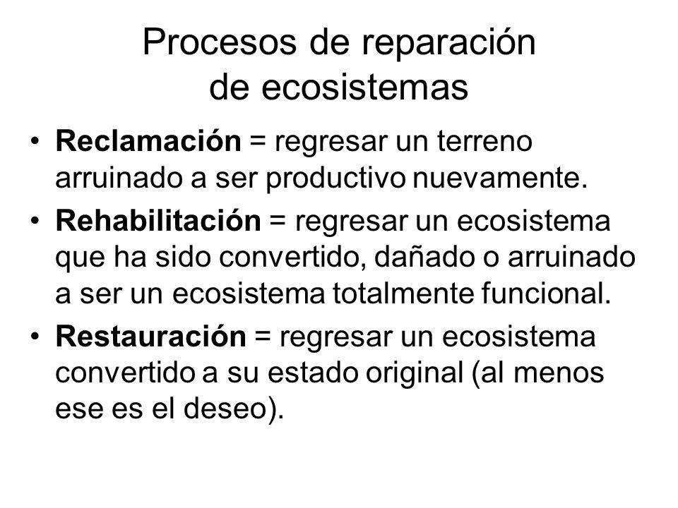 Procesos de reparación de ecosistemas