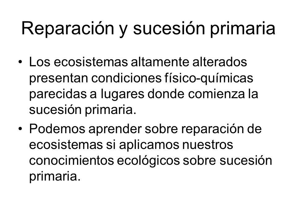 Reparación y sucesión primaria