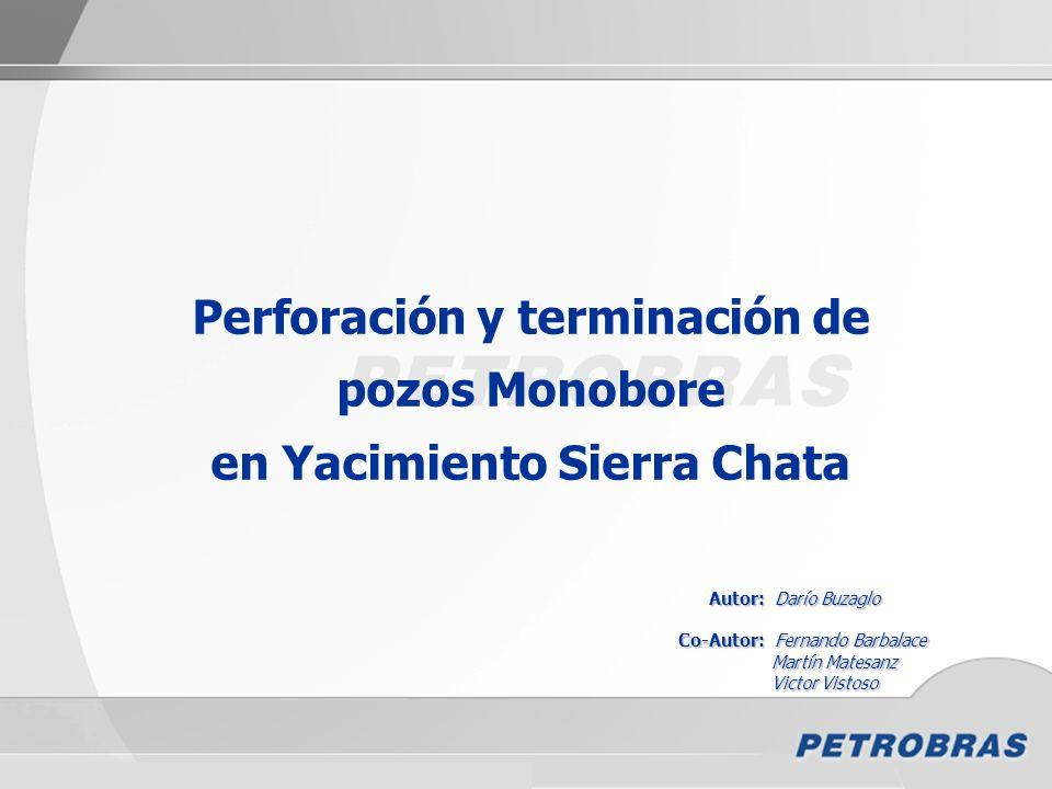 Perforación y terminación de pozos Monobore en Yacimiento Sierra Chata