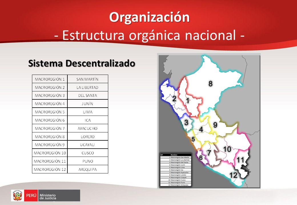 Organización - Estructura orgánica nacional -