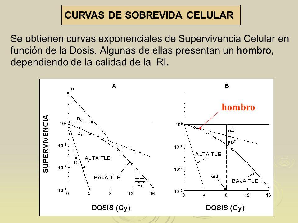 CURVAS DE SOBREVIDA CELULAR