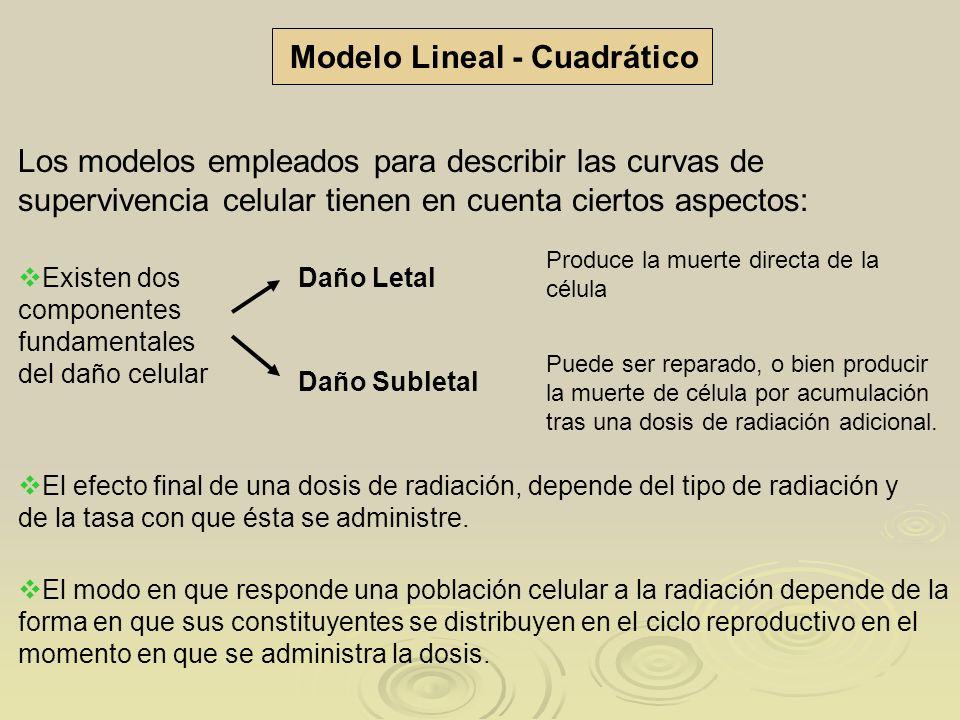 Modelo Lineal - Cuadrático