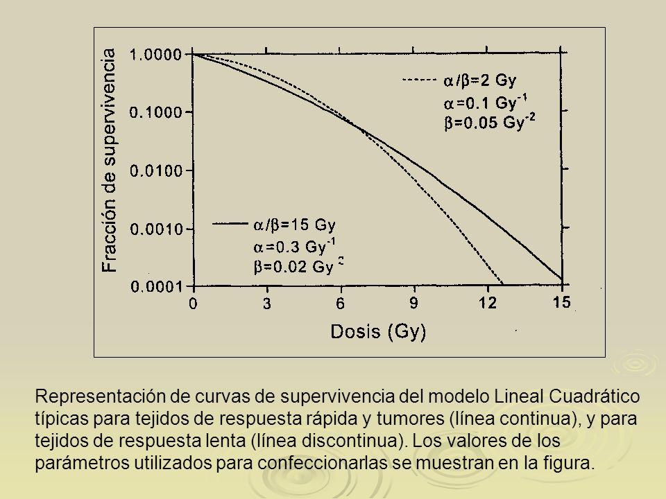 Representación de curvas de supervivencia del modelo Lineal Cuadrático típicas para tejidos de respuesta rápida y tumores (línea continua), y para tejidos de respuesta lenta (línea discontinua).