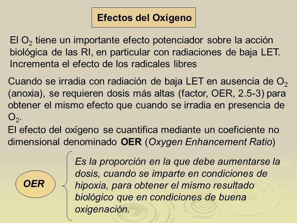 Efectos del Oxígeno
