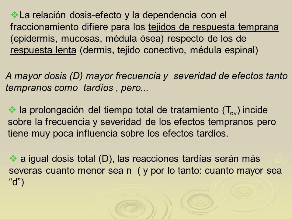 La relación dosis-efecto y la dependencia con el fraccionamiento difiere para los tejidos de respuesta temprana (epidermis, mucosas, médula ósea) respecto de los de respuesta lenta (dermis, tejido conectivo, médula espinal)