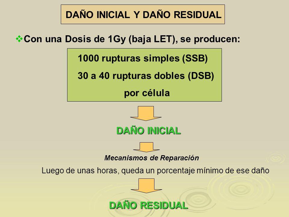 DAÑO INICIAL Y DAÑO RESIDUAL