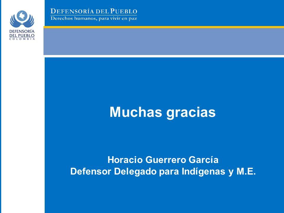 Horacio Guerrero García Defensor Delegado para Indígenas y M.E.