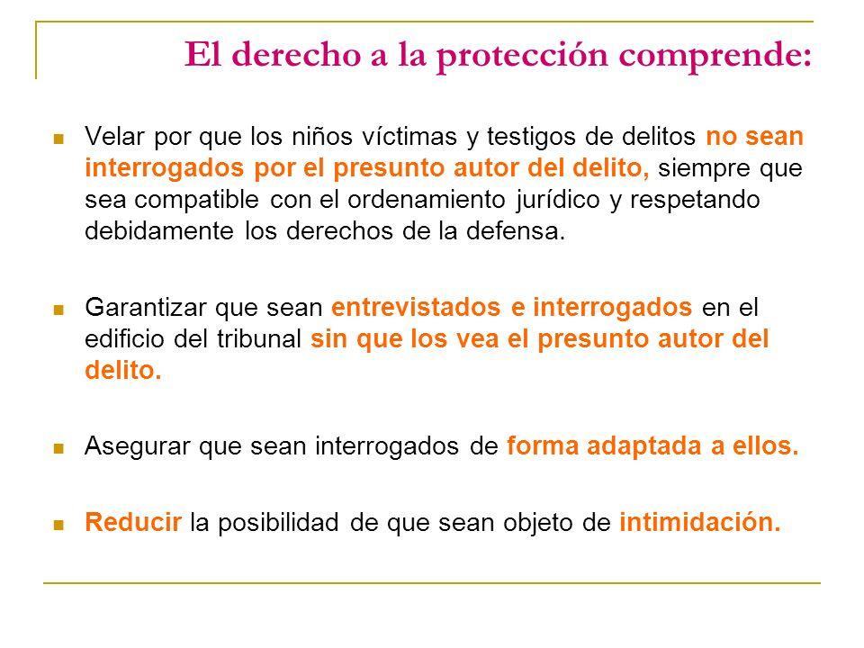El derecho a la protección comprende: