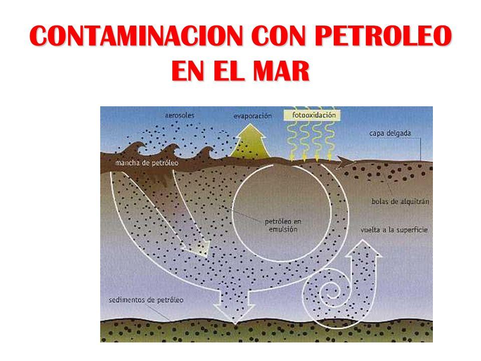 CONTAMINACION CON PETROLEO EN EL MAR