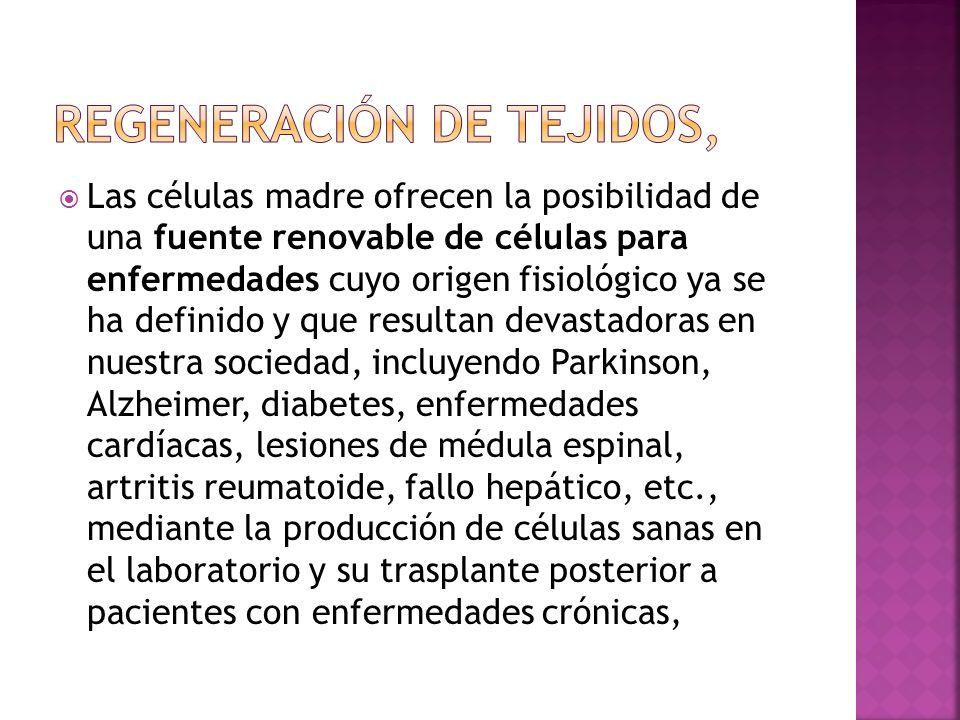 Regeneración de tejidos,
