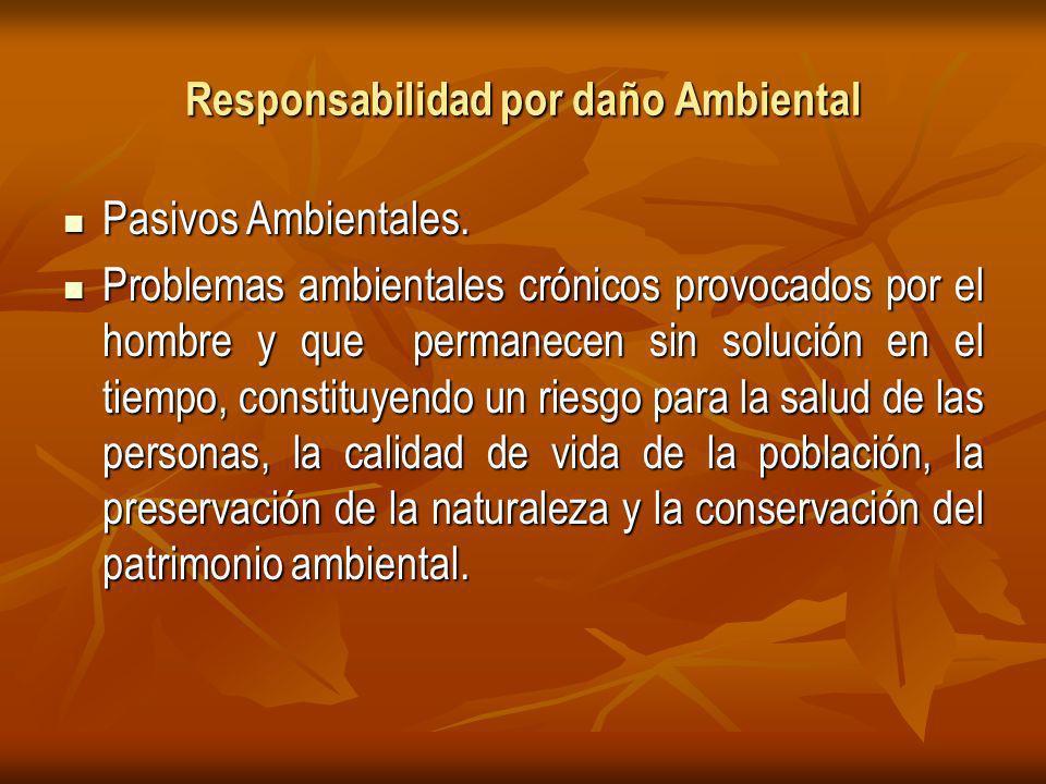 Responsabilidad por daño Ambiental