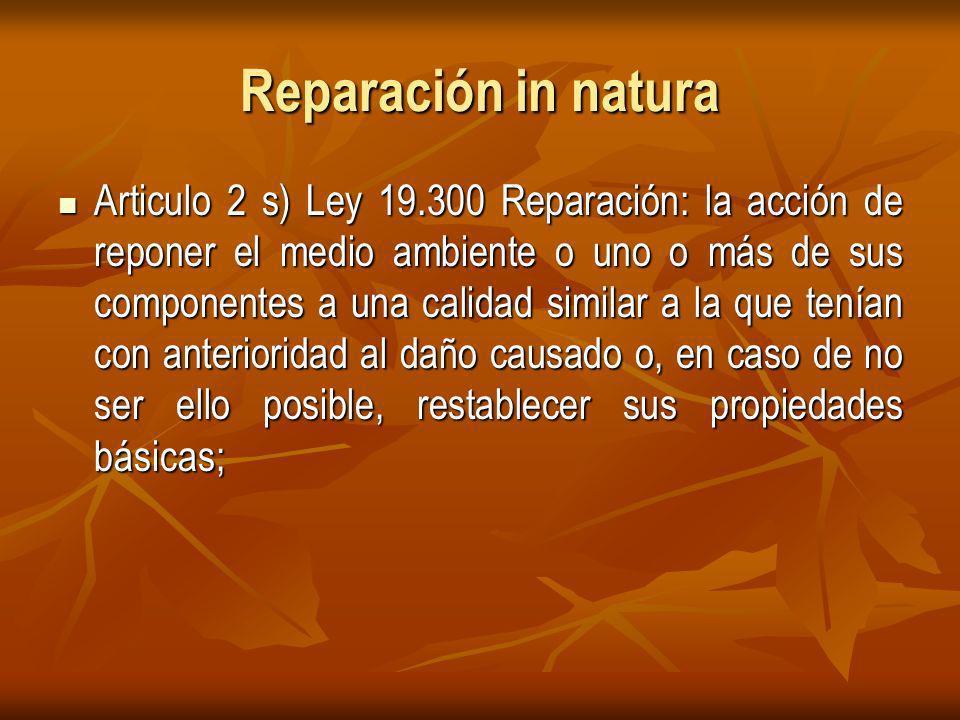 Reparación in natura